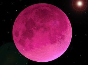 Pink Moon-